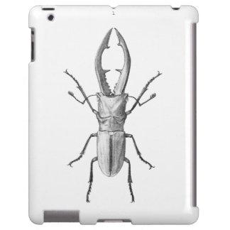 Vintage beetle illustration case