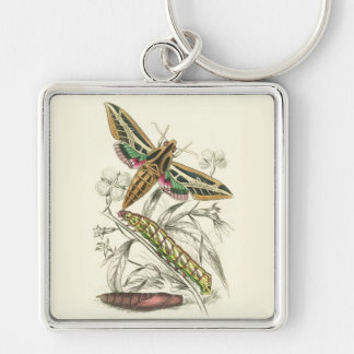 Vintage Moth Progression Silver-Colored Square Key Ring