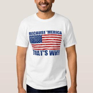 Vintage Original BECAUSE 'MERICA THAT'S WHY Tshirt
