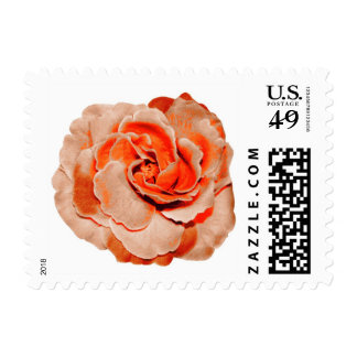Vintage pink orange rose flower postage stamps