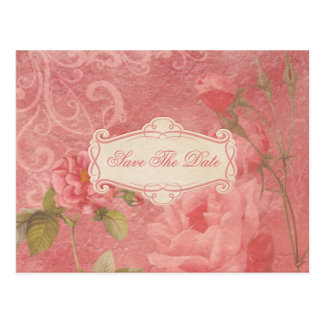 Vintage Pink Roses Save The Date Postcard
