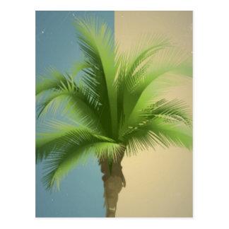 Vintage Retro Palm Tree Turquoise Blue Cream Sepia Postcard