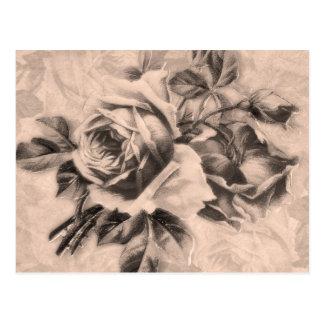 Vintage Roses Sepia Postcard