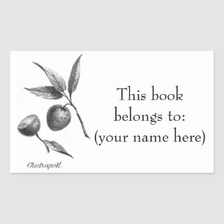 Vintage zapote exotic fruit etching bookplate rectangular sticker
