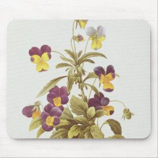 Viola Tricolour Mouse Pad