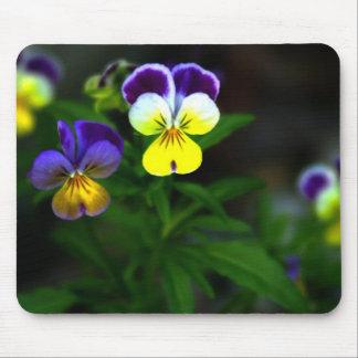 Violas Mouse Pad