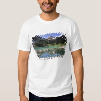 WA, Okanogan NF, Lewis Lake and Black Peak Tee Shirt