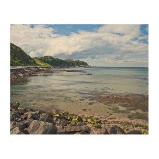 Wall Art - Larne Beach, Northern Ireland Wood Canvas