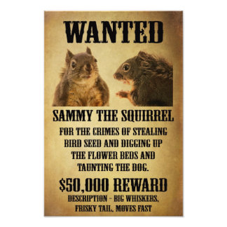Wanted Poster with Squirrel Art Photo