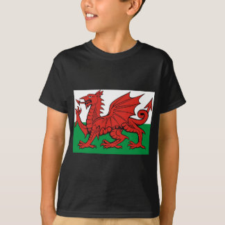 Welsh flag, wear it with pride tshirts