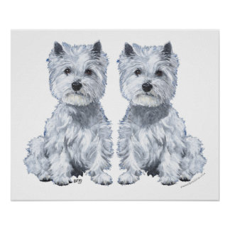 West Highland White Terrier Twins! Poster