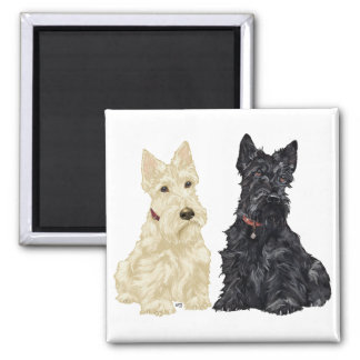 Wheaten and Black Scottish Terriers Square Magnet