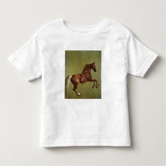 Whistlejacket, 1762 shirts