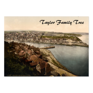 Whitby I, Yorkshire, England Family Tree Pack Of Chubby Business Cards