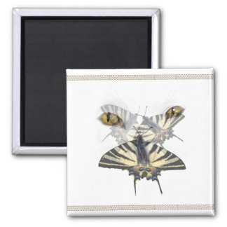 White Cat Swallowtail  Magnet