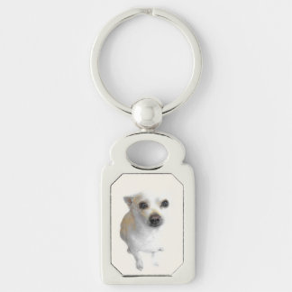 White chihuahua keychain Key ring Silver-Colored Rectangle Key Ring