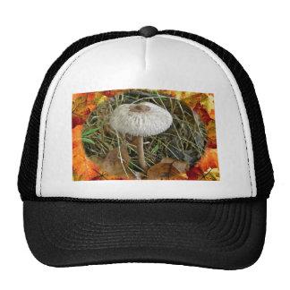 White Parasol Mushroom Coordinating Items Cap