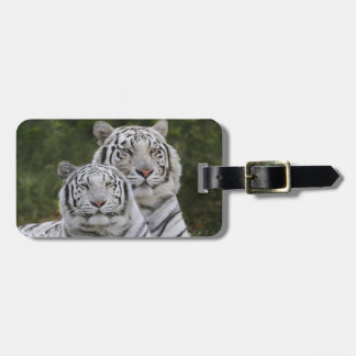 White phase, Bengal Tiger, Tigris Tags For Luggage