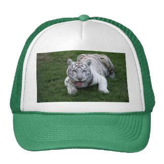 White tiger 014 cap