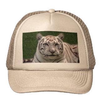 White Tiger 3949e Cap