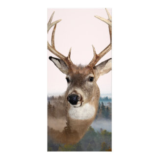 Whitetail Deer Double Exposure Rack Card