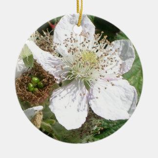 Wild Strawberry Bloom Macro Round Ceramic Decoration