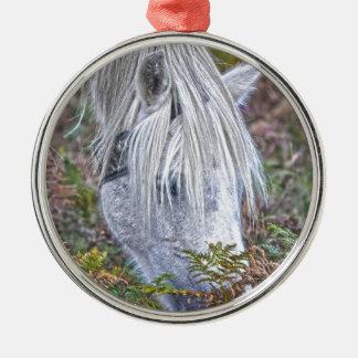 Wild White New Forest Pony Grazing on Bracken Silver-Colored Round Decoration
