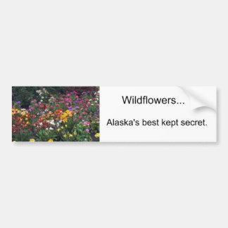 Wildflowers, Alaska Bumper Sticker