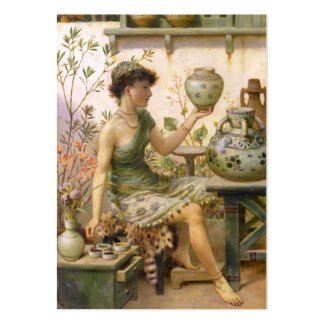 William Stephen Coleman: The Potter's Daughter Pack Of Chubby Business Cards