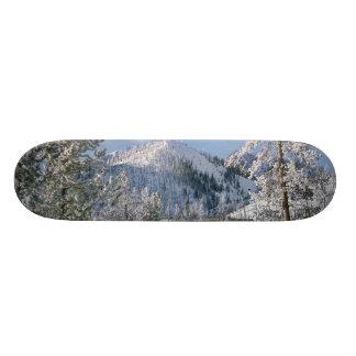 Winter in Yellowstone National Park, Wyoming Custom Skate Board