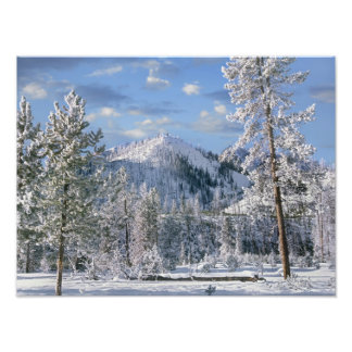 Winter in Yellowstone National Park, Wyoming Photographic Print