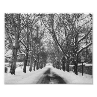 Winter Road Photo Art