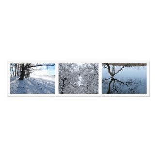 """Winter Snow, Boston, MA 30x7.5"""" photo"""