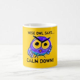Wise Owl Says...Calm Down! Basic White Mug