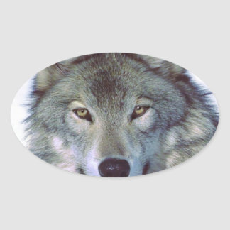 Wolf animal totem oval sticker