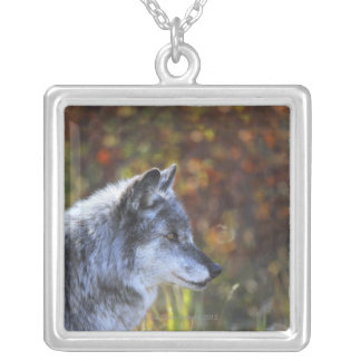 Wolf (Canis Lupus) Square Pendant Necklace