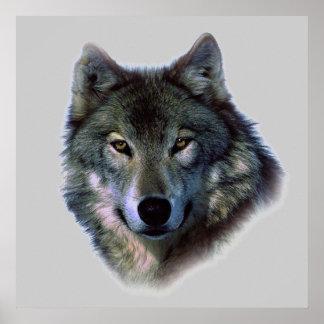 Wolf Eyes Poster Print