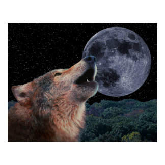 Wolf Howling at the Moon - Poster