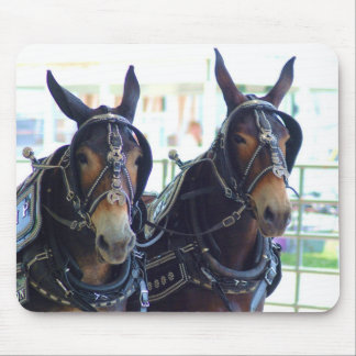 woodbury tn mule show mouse pad