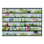 World of Cow Wallpaper Greeting Card
