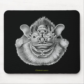 Wrinkle-faced Bat Mouse Pad