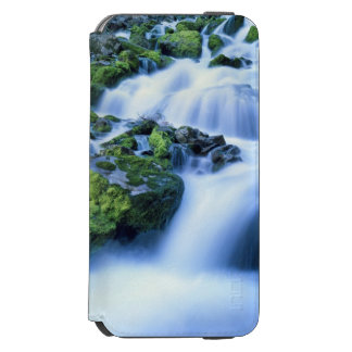 Wyoming. USA. Periodic Spring during period of Incipio Watson™ iPhone 6 Wallet Case