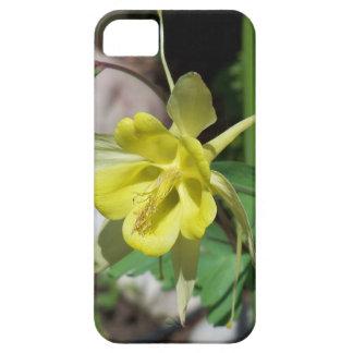 Yellow Columbines iPhone 5 Cover