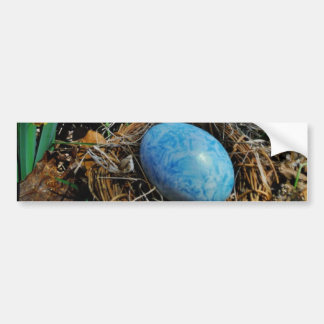 Yellow Daffodils and blue egg in nest Bumper Sticker