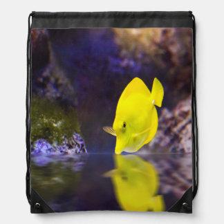 Yellow Surgeon fish looks at it's reflection Rucksack