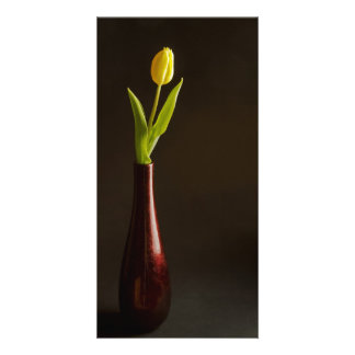 yellow tulip in dark red vase photo card