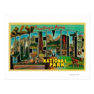 Yosemite National Park, California - Large Lette Postcard
