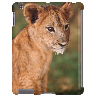 Young lion sitting iPad case