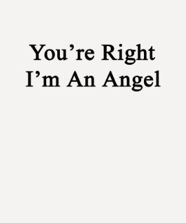 You're Right I'm An Angel T Shirts
