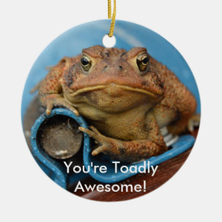 You're Toadly Awesome! Round Ceramic Decoration